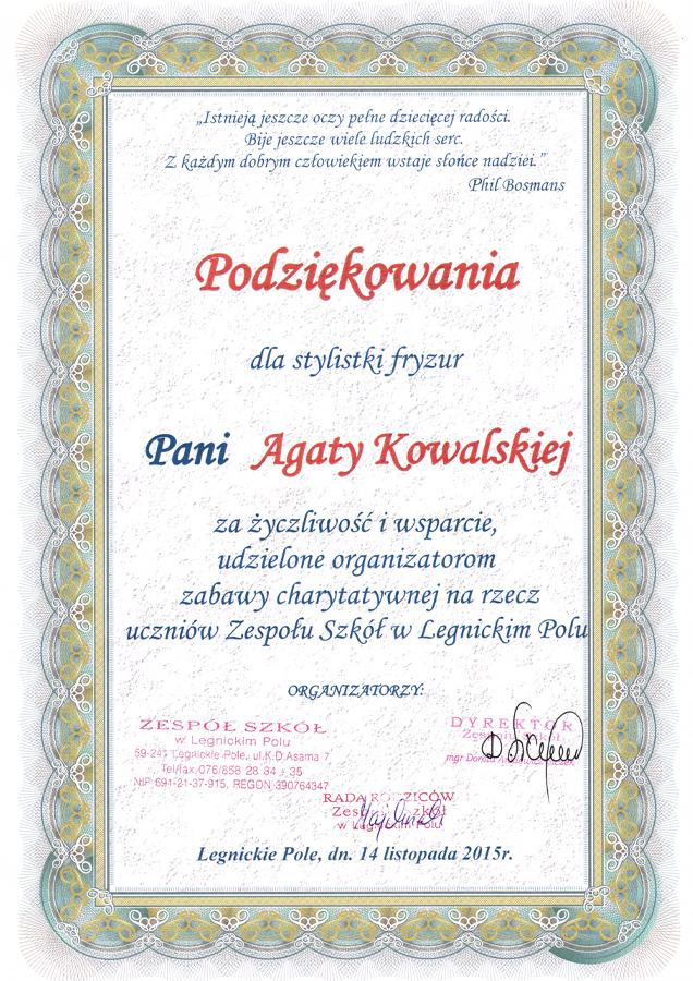 Dyplomy i wyróżnienia